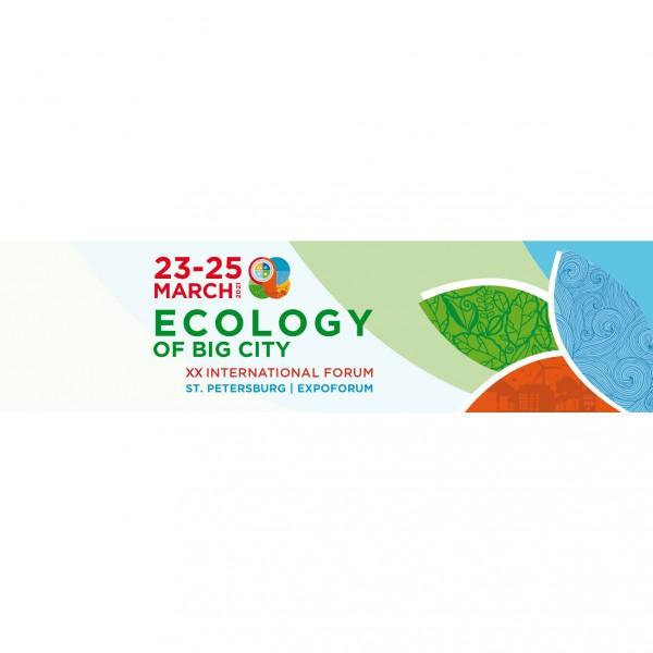 Ecology of Big City 2021