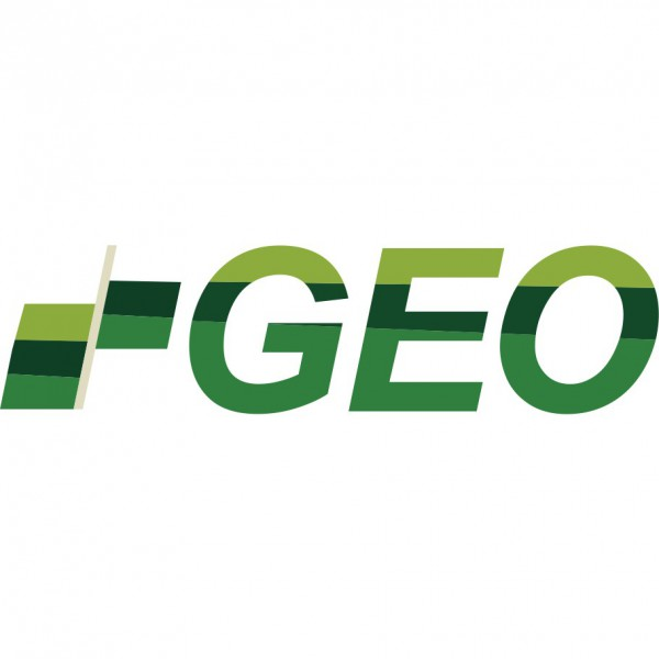 Middle East Geoscience Conference & Expo (GEO) 2020