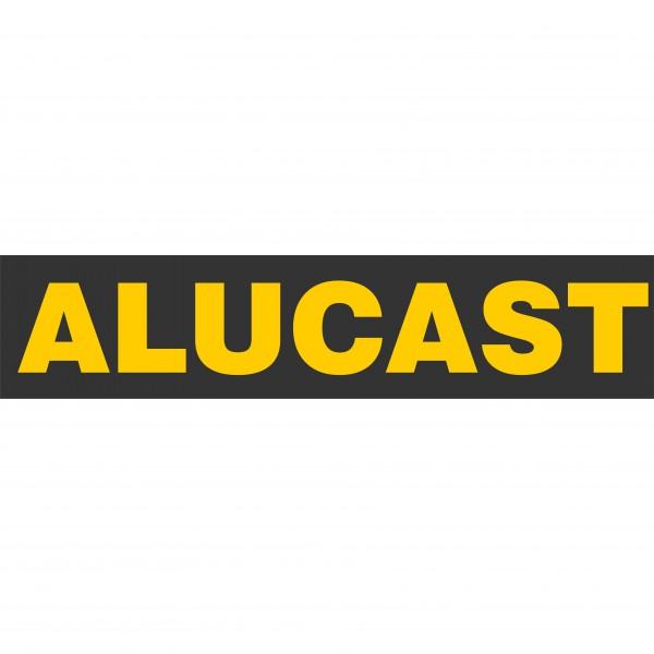 ALUCAST 2020